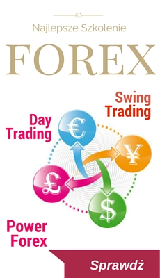 Forex turkey group
